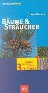 Bäume & Sträucher: Treffsicher bestimmen mit dem 3er-Check
