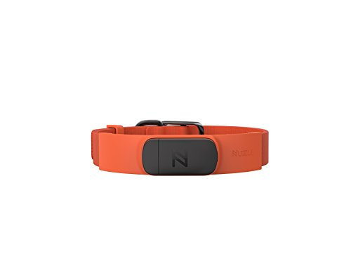 Nuzzle Pet Activity and GPS Tracker Large Collar, 1'', Orange by Nuzzle