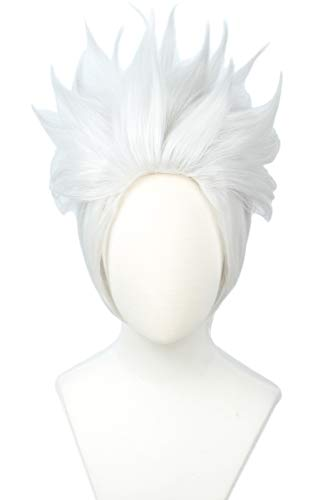 Linfairy Short Layered Cosplay Wig Halloween Costume Silvery White Wig Not Style -