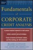 img - for Standard & Poor's Fundamentals of Corporate Credit Analysis 1 edition book / textbook / text book