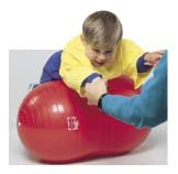 Physiogymnic Ball (40 cm PhysioGymnic Ball)