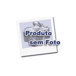 Folhas Caidas - a Critica e a Poesia / Folhas Caidas