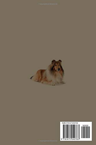 Rough Collie Notebook: 120 Page Unlined (6 x 9 inches) Rough Collie Journal with More Rough Collies Inside! 2