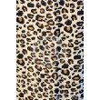 Fleece Throw 50in X 60in Leopard Design