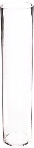 WGV Clear Cylinder Glass Vase, 4 by ()