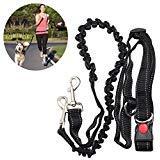 (UEETEK Hands Free Dog Leash Belt Bungee Leash with Adjustable Waist Belt for Jogging Hiking Walking,Dog Bungee Harness for Running)