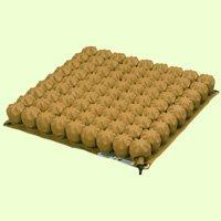 Star Cushion SCS 1515-1 15.5 x 15.5 x 2 in. Short Contour Cushion