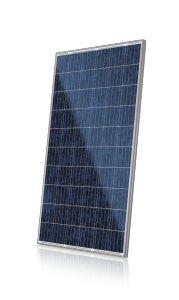Jinko Solar 270W Poly Blk Wht 1000V Solar Panel   Pack Of 4