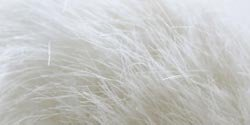 Bulk Buy: Bernat Faux Fur Pom Pom  White Rabbit 167001-1005