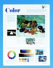 Crystal Productions Middle-High School Elements and Principles of Design Posters - Set 14
