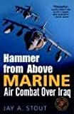 Hammer from Above, Jay A. Stout, 0891418717