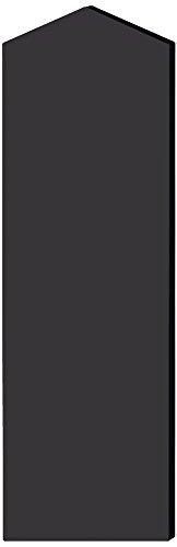 Salsbury Industries 22246BLK Double End Side Panel for 21-Inch Deep Extra Wide Designer Wood Locker with Sloping Hood, Black by Salsbury Industries
