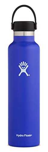 (Hydro Flask 24 oz Double Wall Vacuum Insulated Stainless Steel Leak Proof Sports Water Bottle, Standard Mouth with BPA Free Flex Cap, Blueberry)