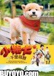 Mameshiba Cubbish Puppy DVD (Region 3) (English Subtitled)