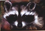 - Bob Ross Wildlife How-to Packet Raccoon by BobRoss