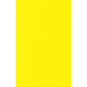 Filz /Öko-Tex gepr/üft 20x30 cm Farbe 15//zitronengelb