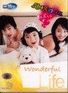 Wonderful Life - Korean Drama (5 DVD) All Region with English Subtitles