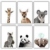 OIBTECH Animal Nursery Wall Art Baby Animal Nursery Safari Wall Decor Woodland Nursery Decor Wall Art Decorations 8#039#039x10#039#039 Unframed Art Prints for Home Room Decor6Pcs