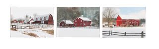 Canvas Prints, Wooden Framed The Red Barn Collection Set Of 3 Painting of 3 Diffrent House in Winter Ready to Hang for Home and Office Wall Decor 10 X 14 X 1 1/2 (Green Pot O Gold Glasses)