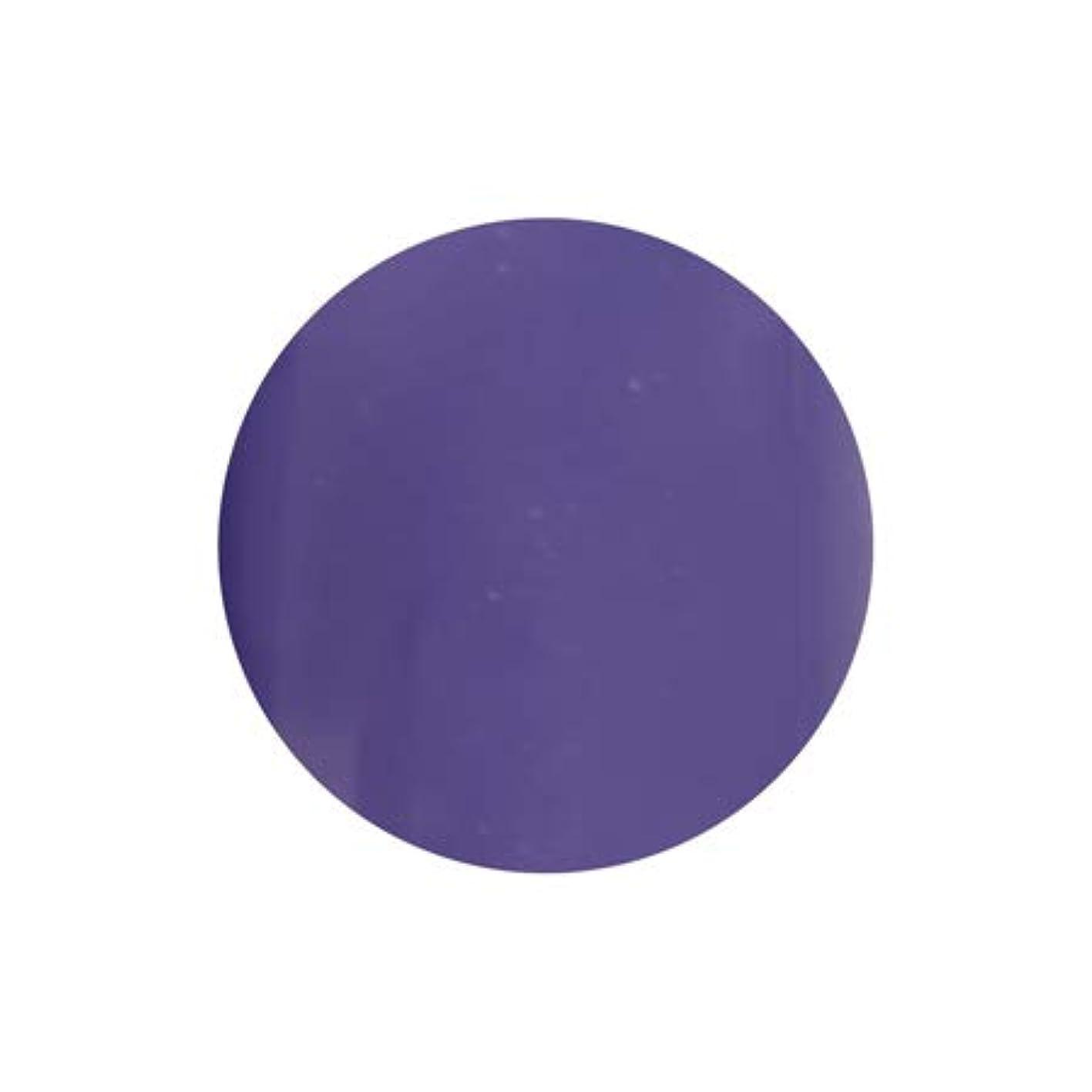ヒゲ泥だらけタオルT-GEL COLLECTION カラージェル D228 シフォンバイオレット 4ml