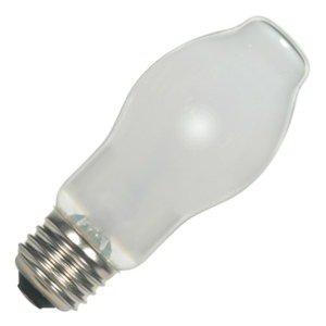 Halogen Carded Light Bulb - 5