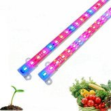 Led Grow Rigid Strip Led Grow Lights - Dc12v 50cm 5630 Red: Blue Grow Rigid Strip Waterproof Ip65 Greenhouse Light - 1PCs