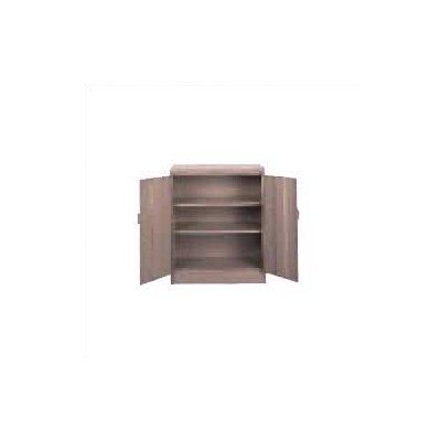 Deluxe 2 Door Storage Cabinet Color: Medium Grey