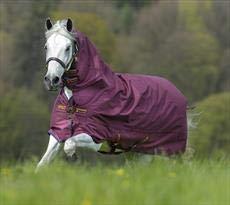 Burgundy with Red & Navy 6'0\ Burgundy with Red & Navy 6'0\ Horseware Amigo Hero ACY All-in-One Medium 200g Tu