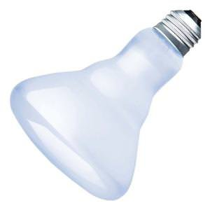 R30 Full Spectrum Flood Light Bulbs