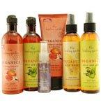 Healing Garden Organics Body Wash, Olive & Aloe - 8 Oz / Bottle, 1 ea (Organics Garden Healing)