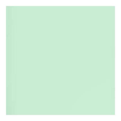 Lee Filters スチールグリーン 48インチ×25フィート ロールジェルフィルター   B07GFP2GPD