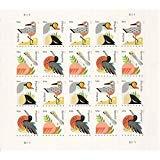 (Coastal Birds Sheet of 20 Postcard Forever U.S. Postage Stamps by USPS)