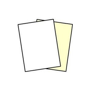 250 Sets, NCR Paper, 5887, Collated 2 Part (White, Canary), Letter Size Carbonless Paper Appleton by NCR