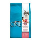 Purina ONE Salmon & Tuna Flavor Dry Food for Cats
