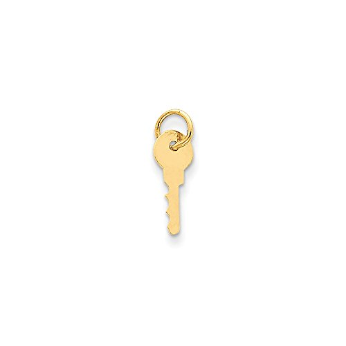 14k Yellow Gold Key Pendant Charm Necklace Fine Jewelry Gifts For Women For Her ()