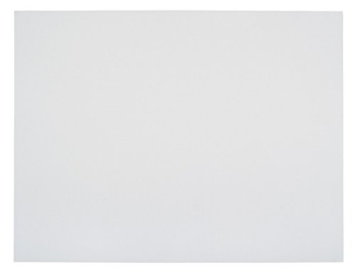 School Smart 1485727 Railroad Board, 4-ply Thickness, 22'' x 28'', White (Pack of 25) by School Smart