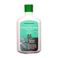 Jason Shampoo Sea Kelp Ntrl