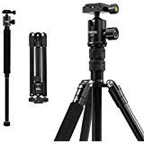Selens Aluminum Alloy 62'' Lightweight Camera Tripod with 360 Degree Panorama Ball Head