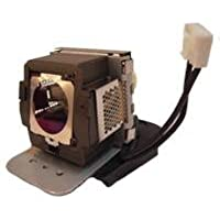Electrified 5J.J2C01.001 Replacement Lamp with Housing for BenQ Projectors