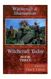 Shamanism and Witchcraft (Witchcraft Today, Book 3)