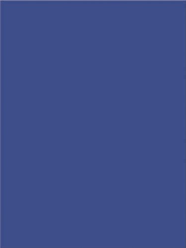 Pacon Tru-Ray Construction Paper, 18-Inches by 24-Inches, 50-Count, Royal Blue (103081)
