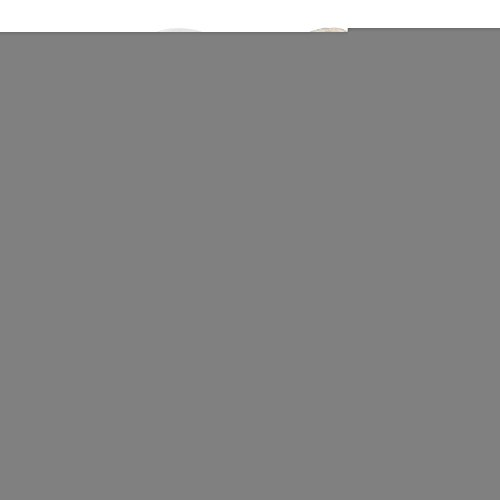 Bigcardesigns Schattige Honden Katten Silhouet Casual Hoge Top Canvas Sneakers Kat Wit