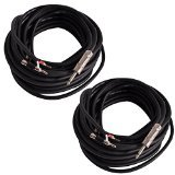 Seismic Audio BS12Q100-2Pack 100-Feet Pro Audio Banana to 1/4-Inch Speaker Cable 12-Gauge, Pair by Seismic Audio