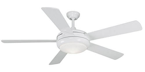 Litex E-TIT52WW5LKRC Titan Collection 52-Inch Ceiling Fan wi