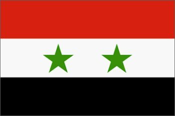 Amazoncom Syria Flag X Foot Nylon PH Outdoor Flags Garden - Syria flag