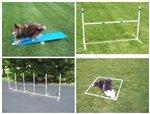 Dog Agility Starter Kit Obstacle - 7
