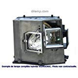 Pj506 Viewsonic Projector Lamp Replacement Projector Lamp Assembly With High Quality Genuine Original Osram P Vip Bulb Inside