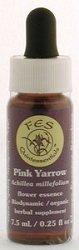 Services Flower Essence (FES) - Millefeuille rose - FES Quintessentials Essences Fleur 1/4 oz