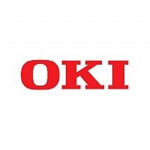 OKI Print Server (45268701)