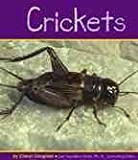 img - for Crickets (Insects) book / textbook / text book